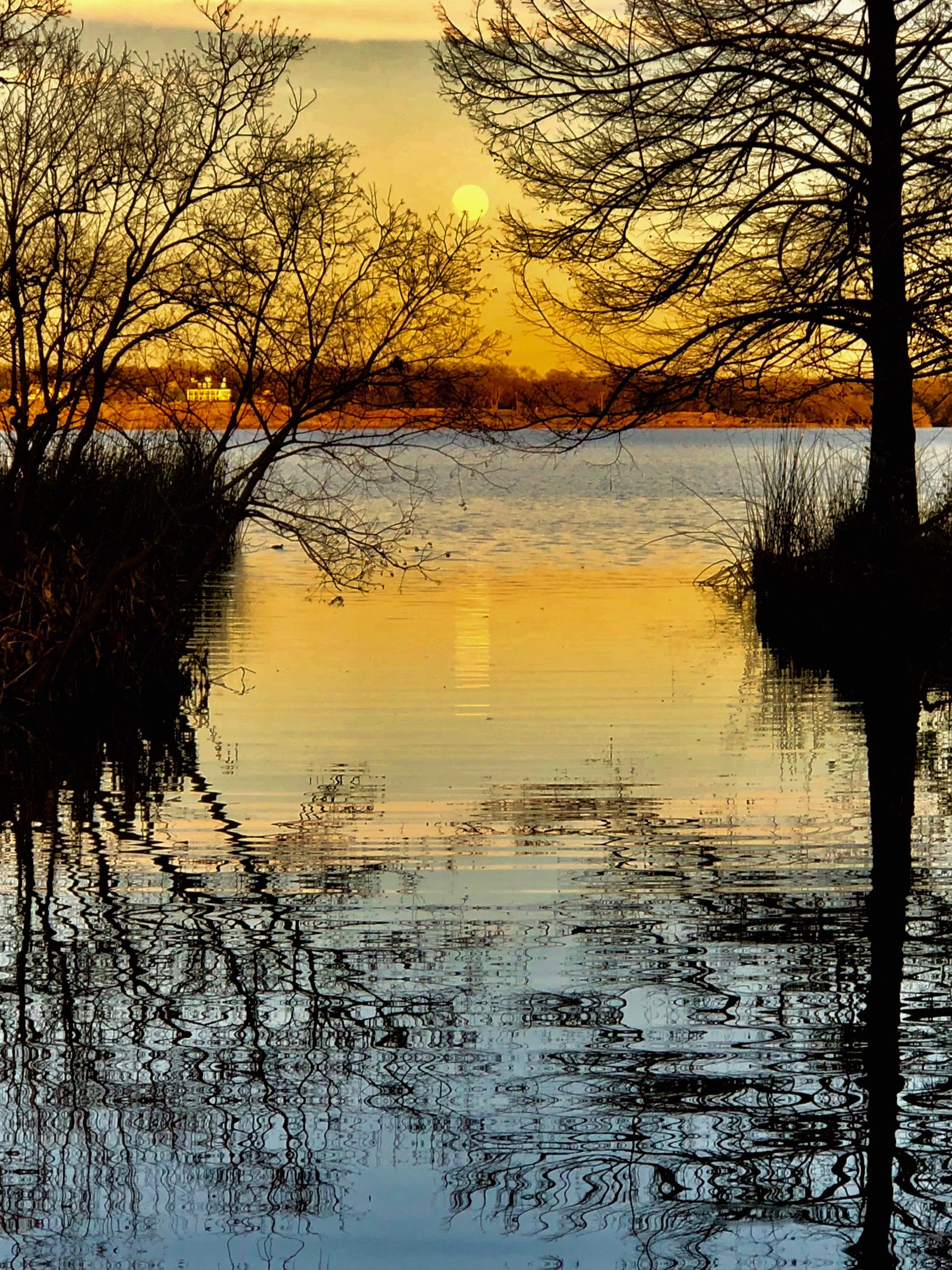 Reflections on White Rock Lake by Bobbie Baird