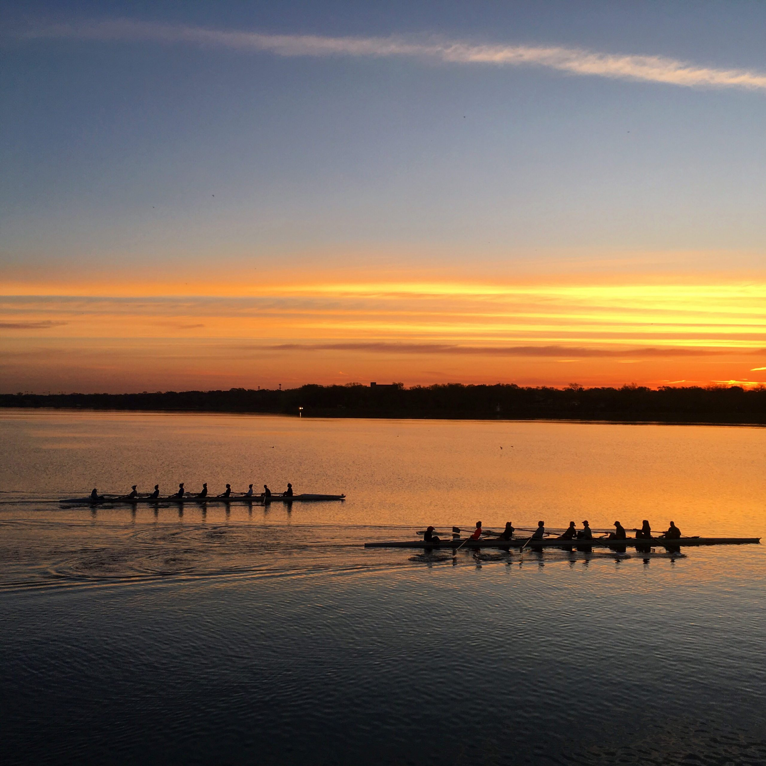 Sunset Rowers by Sue Benner
