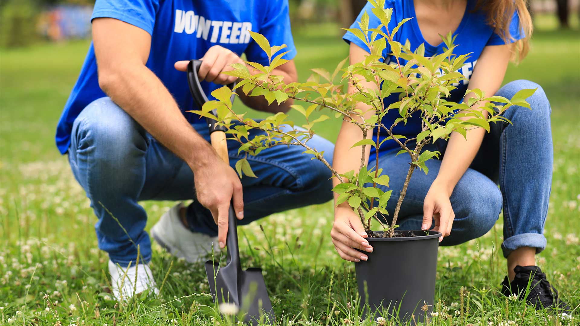 Volunteer for the White Rock Lake Foundation Tree Planting Event